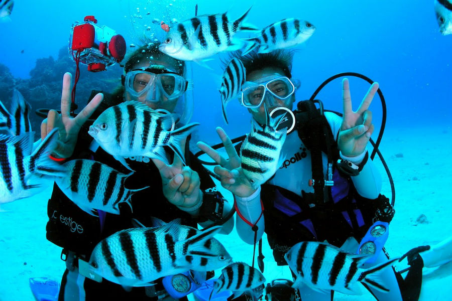 Scuba diving in Syros